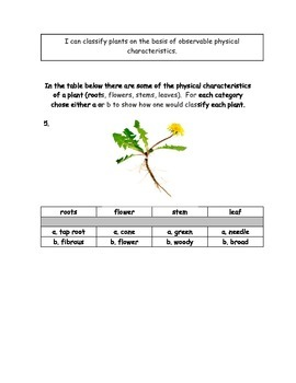 Plant Adaptation Assessment ~ 3rd Grade