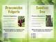 Task Cards: Plant Adaptation