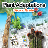 Plant Adaptations: A Second Grade NGSS Unit (works with di