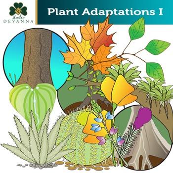 Plant Adaptations Clip Art Set
