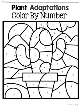 Plant Adaptations Color-By-Number