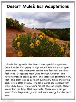 Plant Adaptations Informational Reading Passages and Activities #2