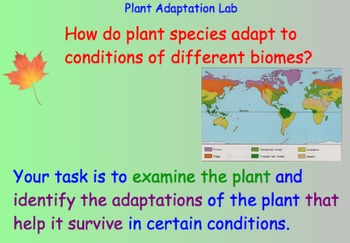 Plant Adaptations - Lesson Plans, Presentations, Lab Experiment, Videos