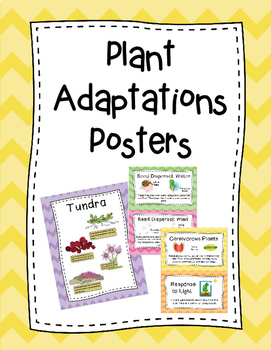 Plant Adaptations Posters