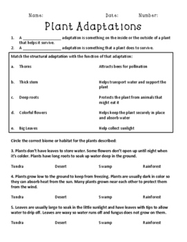 Plant Adaptations Quiz Assessment Printable - Structural and Behavioral