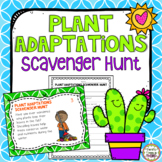 Plant Adaptations Scavenger Hunt & Word Search