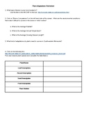 Plant Adaptations Worksheet/WebQuest