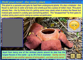 Plant Adaptations - a SmartBoard and Interactive Whiteboard lesson