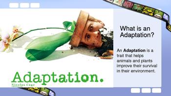 Plant Adaptations eBook