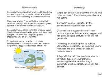 Plant Anatomy/Life Processes Study Book