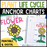 Plant Anchor Charts