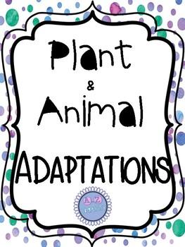 Plant/Animal Adaptations