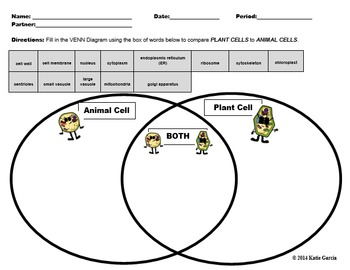 Animal Cells & Plant Cells PowerPoint Presentation BUNDLE