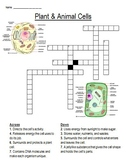 Plant & Animal Cell Crossword Puzzle