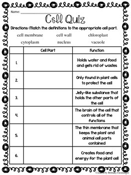 Plant & Animal Cell Quiz by Brittany Ensminger | TpT