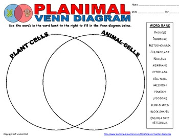 Plant Animal Cell Venn Diagram By Science Teacher Resources Tpt