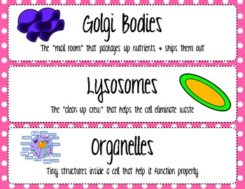 Plant and Animal Cell Word Wall & Task Cards