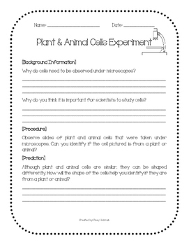 Plant & Animal Cells Experiment
