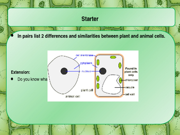 Plant & Animal Cells Lesson