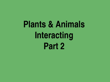 Plant & Animal Interactions ppt