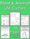 Plant & Animal Life Cycles