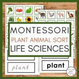 Plant & Animal Sort