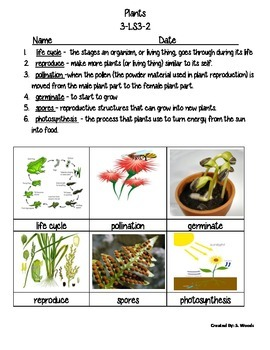 Plant & Animal Vocab. Set - Fusion Science Unit 3 - NGSS Life Cycles and Traits