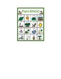 Plant BINGO