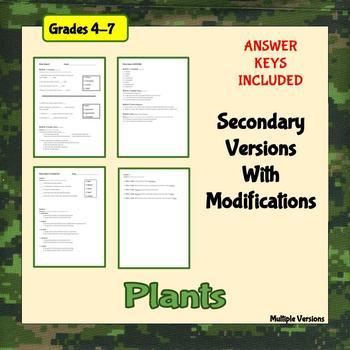 Plant Basics Assessment
