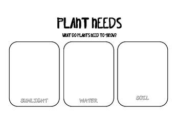 Plant Basics Observation Journal