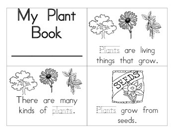 Plant Booklet by Special Education Chick | Teachers Pay ...