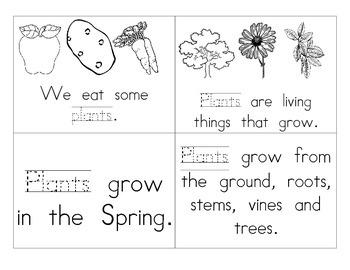 Plant Booklet