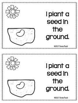 Plant Life Cycle - Emergent Reader  PreK Kindergarten