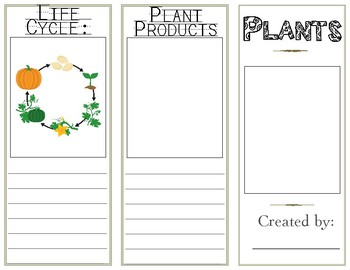 Plant Brochure