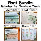 Plant Bundle: Activities for Teaching Plants