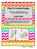 Plant & Carbon-Oxygen Cycle Vocabulary Sort- TEKS 5.9D Aligned