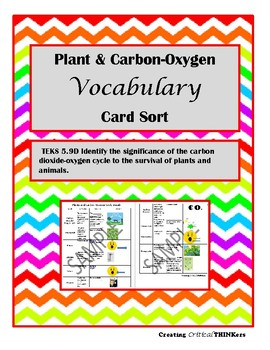 Plant & Carbon-Oxygen Cycle Vocabulary Sort- TEKS 5.9D Aligned