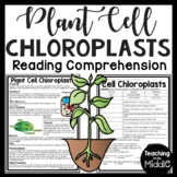 Plant Cell Chloroplasts Informational Text Reading Comprehension Worksheet