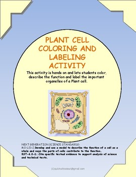 Plant Cell Color, Label, Function Activity
