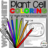 Plant Cell Coloring Worksheet for Review or Assessment