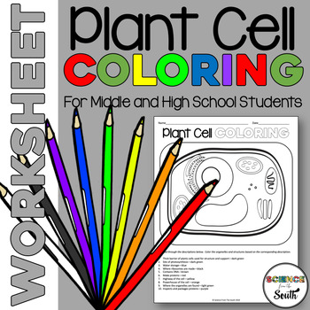 Plant Cell Coloring Printable Worksheet A Fun Way to Revie