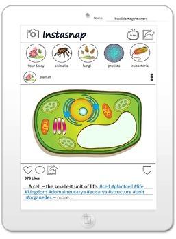 PDF Plant Cell Anatomy Printables