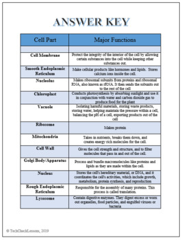 Plant Cell Labeling & Functions Science Worksheet by ...