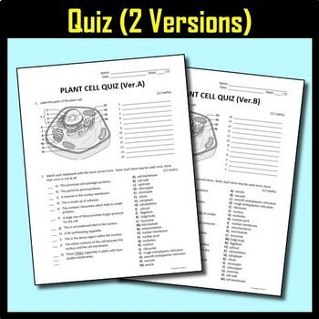 Plant Cell Lesson Bundle {Editable and Options for Differentiation}