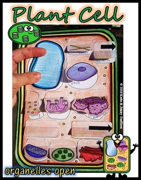 Plant Cell Organelle Cut and Paste Foldable
