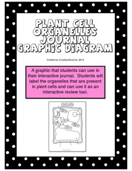 Plant Cell Organelles Journal Graphic