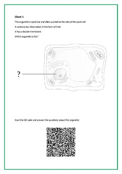 Plant Cell Structure QR Code Activity