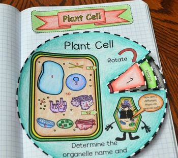 Plant Cell Wheel Foldable