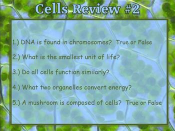 Plant Cell and Animal Cell Five a Day Review Questions PowerPoint