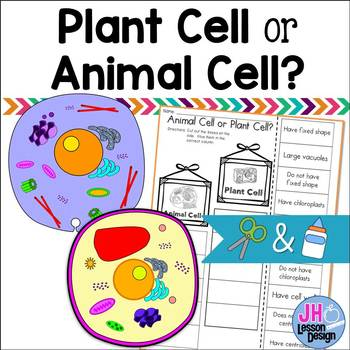 Plant Cell or Animal Cell? Cut and Paste Sorting Activity